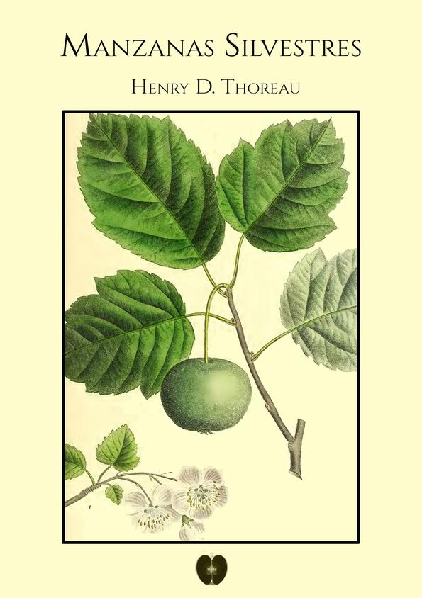 Manzanas silvestres